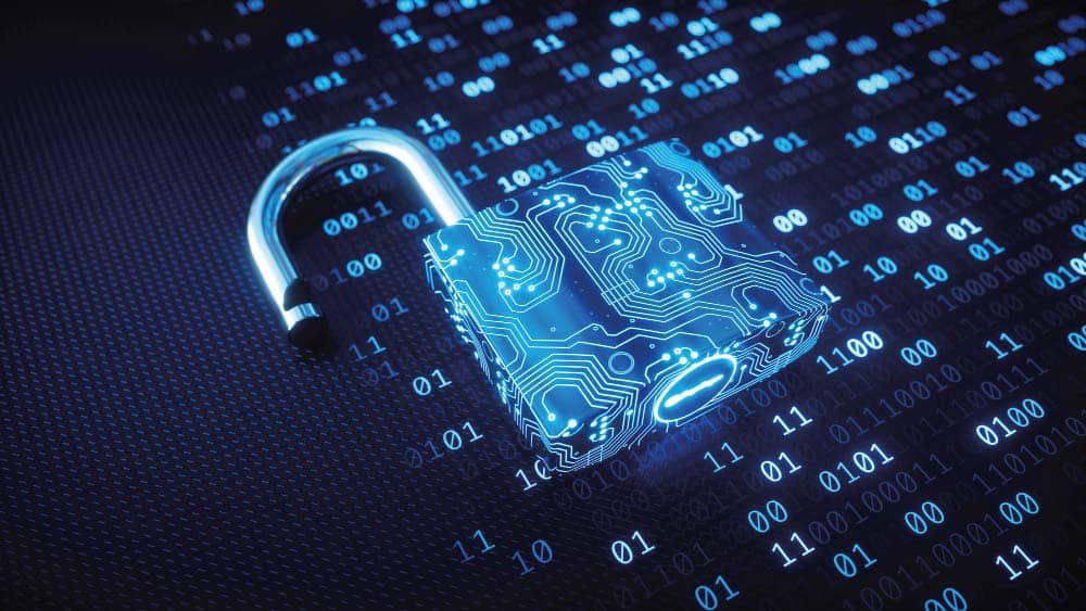 experts-in-corporate-&-business-cyber-security